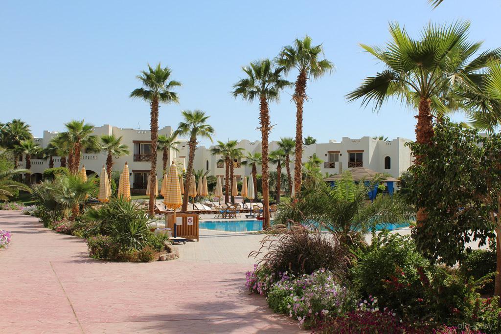 Малый бассейн на территории отеля
