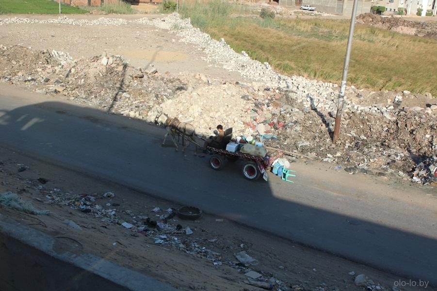 Мусор у дороги в Каире