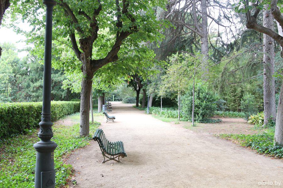 аллея в парке Педральбес