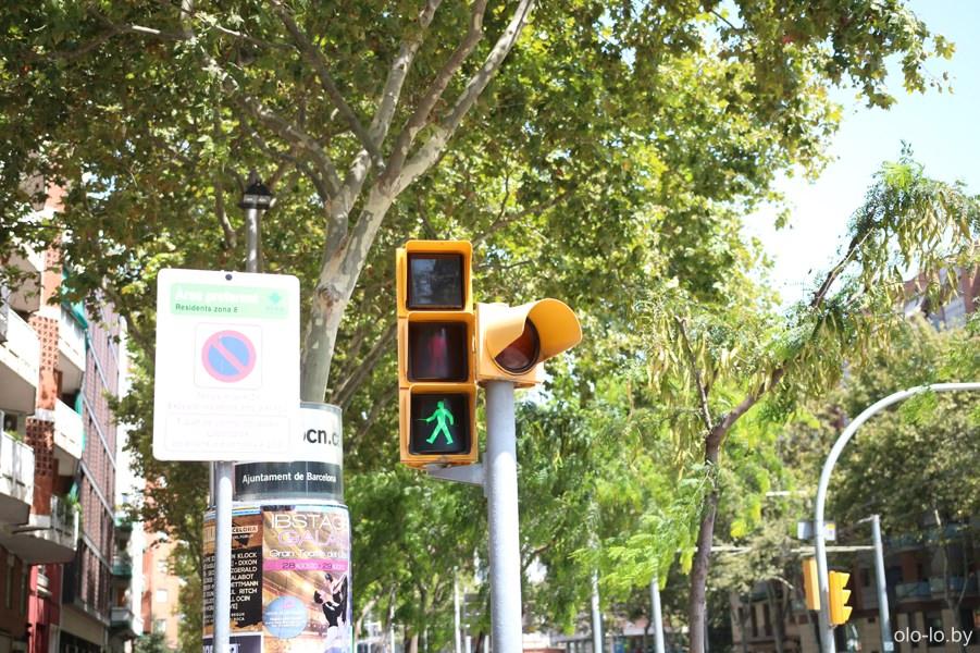 светофор в Барселоне