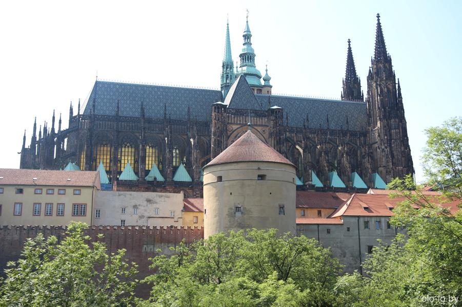 Вид на собор Святого Вита с Королевских садов