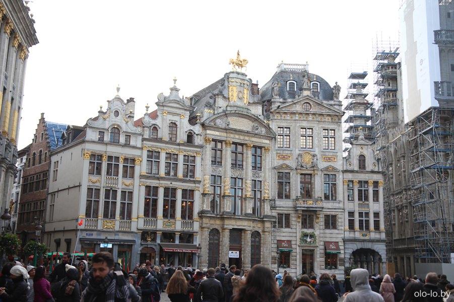 дом лебедя, Брюссель